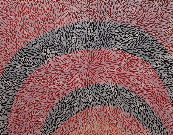 Kurrajong Bush Medicine Leaves Pondofview Eu Aboriginal Art